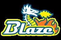 横浜ブレイズ |横浜市南区少年野球連盟所属チーム